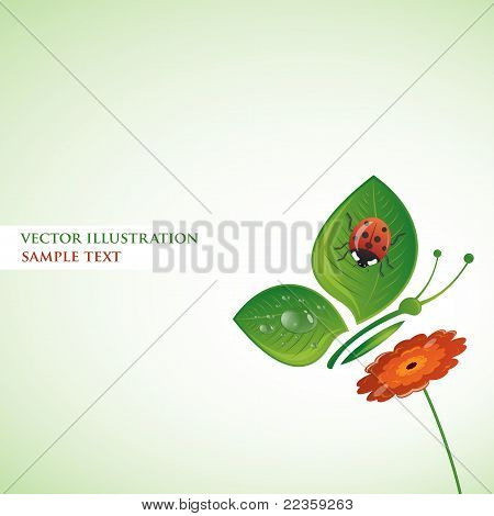 Butterfly-leaf on the flower, vector illustration