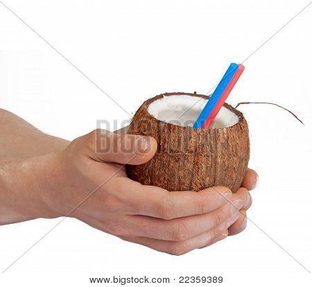 Half Open Coconut In Male Hands