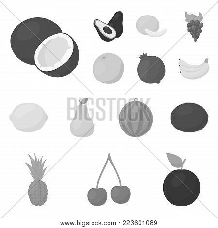 Different fruits monochrome icons in set collection for design. Fruits and vitamins vector symbol stock  illustration.