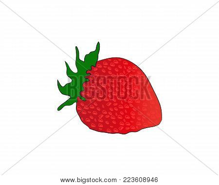 Strawberry fruit close up. Strawberry with leaves isolated on white background. Vector illustration.