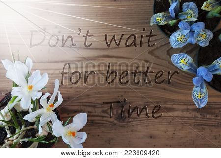 Wooden Background With English Quote Dont Wait For Better Time. Sunny Spring Flowers Like Grape Hyacinth And Crocus. Aged Or Vintage Style