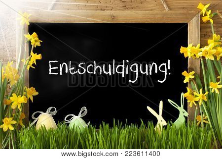 Blackboard With German Text Entschuldigung Means Excuse. Sunny Spring Flowers Nacissus Or Daffodil With Grass, Easter Egg And Bunny. Rustic Aged Wooden Background.