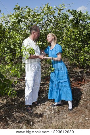 The man and the woman, loving couple, make a declaration of love on a plantation of oranges, Cuba