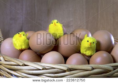 Three Toy Chickens Between Eggs In Packing