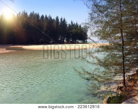 Thailand. The River Flows Into The Sea. Sandy Beach With Palm Trees And Casuarina