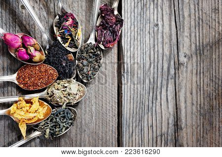 The different kinds of tea presented as a sample in the silver spoons, top view, copyspace.