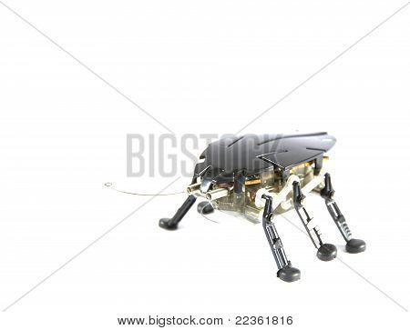 Mechanic bug
