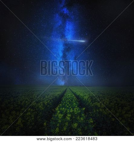 Starry sky with meteor over blooming rape seed field, fine art landscape. Dreamy landscape
