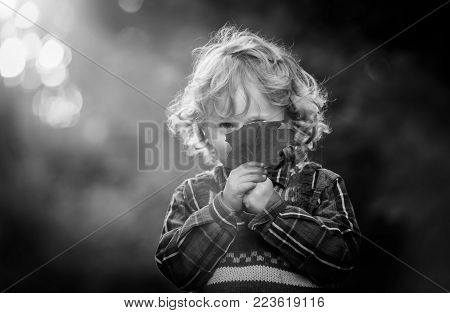 Small boy playing in outdoor in autumnal light. Caucasian kid with curly hair.