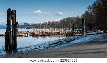 A view looking east along the Fraser River from a beach near Fort Langley, British Columbia. A raft of logs is visible in the water, and the distant mountains are covered with snow.