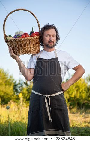 Farmer with an ecological harvest of vegetables in a basket near the garden beds in summer.