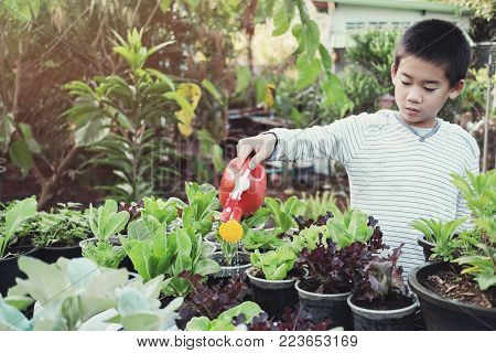 young tween asian boy watering plants in reuse old plastic containers, eco, reuse, montessori education concept