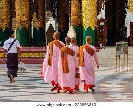 Yangon, Myanmar - Feb 26, 2016. Buddhist Nuns Walking At Shwedagon Pagoda In Yangon, Myanmar. The Pa
