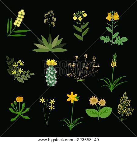 Yellow various decorative flowers isolated vector set