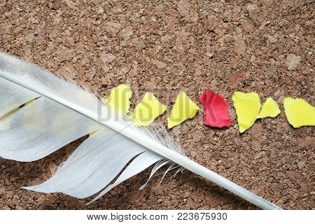 Lot of color paper scraps in a row and feather on wooden background