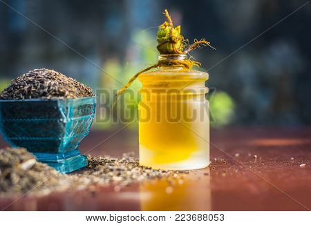Black Cumin Seeds,shah Jerra,nigella Sativa  And Its Extracted Oil On Brown Wooden Surface.