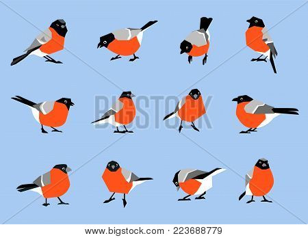 Bullfinches Isolated On White Background. A Set Of Winter Birds In A Flat Style.