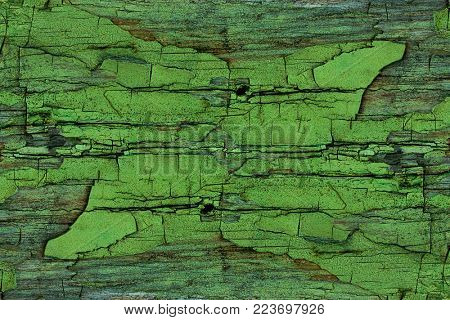 texture of peeling paint on the old wooden boards