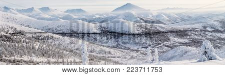 beautiful snow covered winter road and trees in snow capped mountains, kolyma highway, russian federation