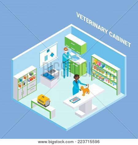 Veterinary cabinet cutaway interior, vector flat isometric illustration. Animal hospital treatment room with furniture, veterinary equipment and supplies, veterinarians checking-up kitten.