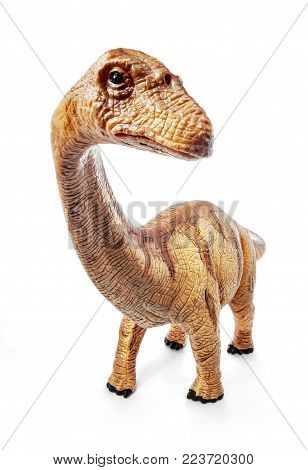 Wide Front view Apatosaurus dinosaurs toy isolated on white background with clipping path. Late Jurassic period.