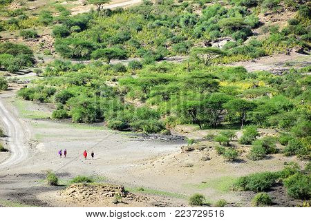 View from above on the tanzanian landscape, acacia bush, dirt road and walking masai people. Tanzania, Africa,