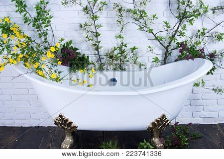 Bathtub At Spring Blossom, Spa. Spring Relax In Bathroom. Beauty And Spa, Health, Wellness. Spa And