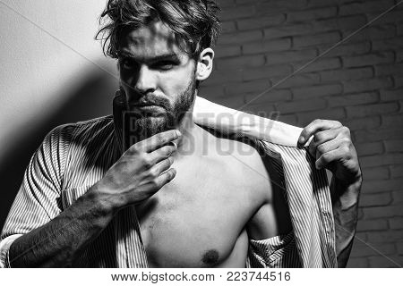 Handsome Man Touches Beard