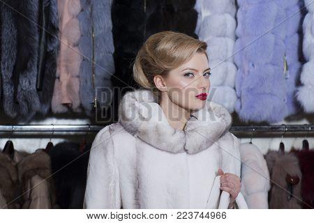 Sensual Woman In Fur, Luxury, Moneybags, Business. Shopping, Seller, Fashion Model, Customer. Woman