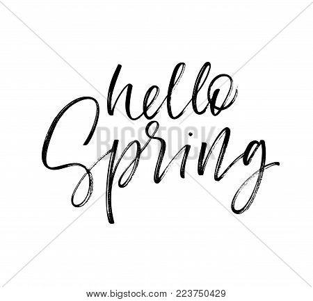 Hello spring phrase. Seasonal lettering. Ink illustration. Modern brush calligraphy. Isolated on white background.