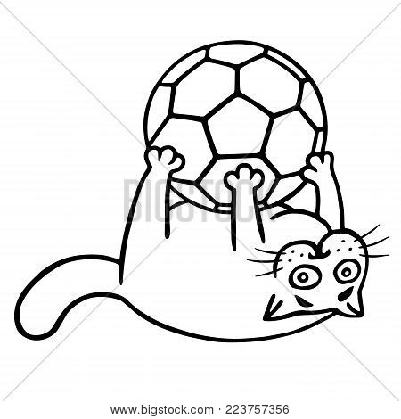 Fat cat is caught a soccer ball. Contour freehand digital drawing. Isolated vector illustration.