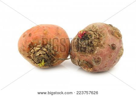 yellow beets on a white background