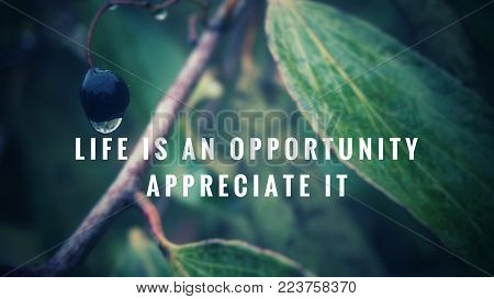 Motivational and inspirational quotes - Life is an opportunity. Appreciate it. With blurred vintage styled background.