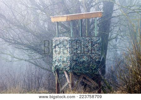 High Seat In The Forest In The Fog