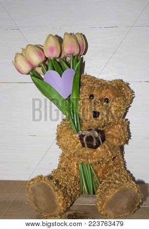 teddy bear over-white. bear with tulips. bear. tulips pink with a teddy bear. tulips. pink tulips. Valentine's Day, Valentine's Day.
