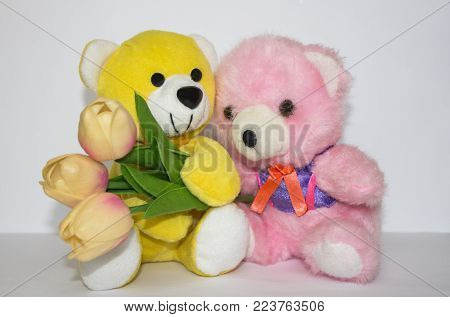 teddy bear over-white. two bears. a yellow bear with tulips and a pink bear. tulips pink with a teddy bear. tulips. pink tulips