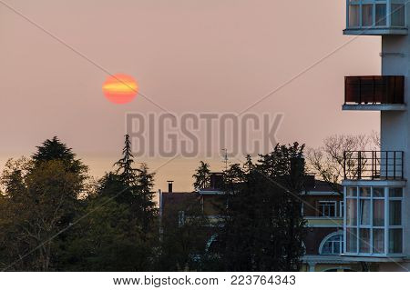 The setting sun over the sea behind the aparment buildings and trees, Sochi, Russia