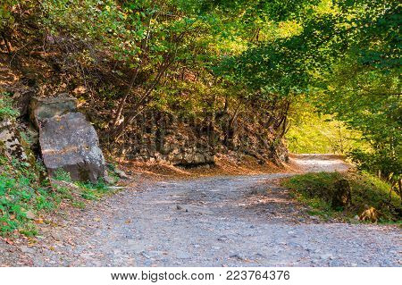Landscape of a curved mountain trail with rocky wall and varicolored trees in sunny autumn day, Sochi, Russia
