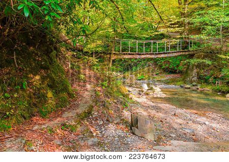 The beam bridge over the mountain river Bezumenka in the ravine in sunny autumn day, Sochi, Russia