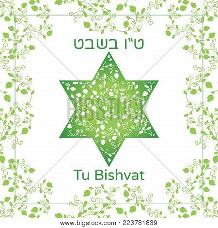 Vector illustration of Jewish holiday. David Star with pomegranate fruits, branches, swirls for greeting card or poster. Text Tu Bishvat on Hebrew, which means the Jewish holiday New Year of the Trees