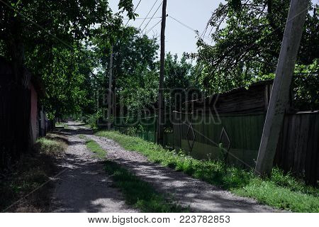 Old street in village, green tress, summer day