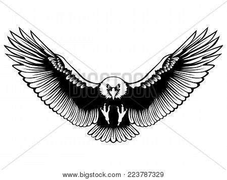 Eagle emblem isolated on white illustration. American symbol of freedom and independence. Retro color logo of falcon.