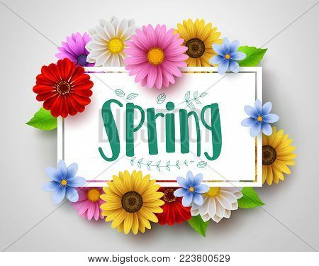 Spring vector template design with spring text in white empty frame and colorful various flowers like daisy and sunflower elements in white background for spring season. Vector illustration.