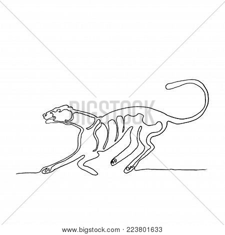 Continuous one line drawing. Running cougar. American animal. Minimalism style.  Vector Ink illustration for your design,logo, card, banner, poster, flyer.