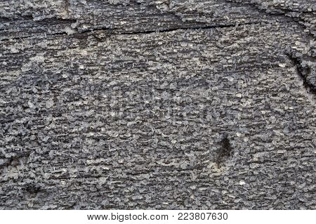 Beautiful frost crystals on the old gray wood macro texture background