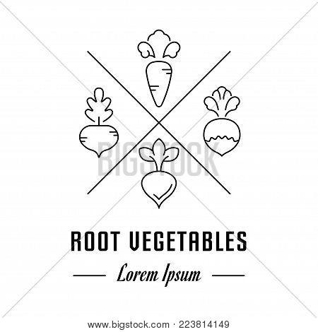 Vector logo root vegetables. Hipster emblem, label or banner for root vegetables. Line sign with elements. Concept brand.