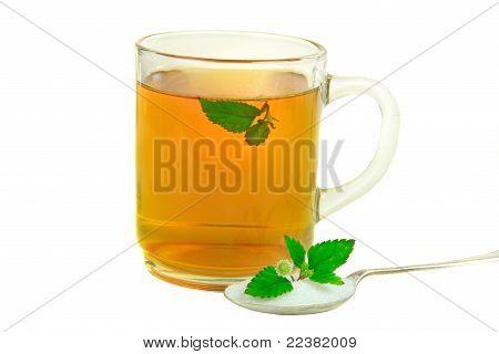 Tea With Aztec Sweet Herb Instead Of Sugar