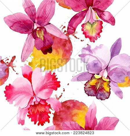 Wildflower pink orchid flower pattern in a watercolor style. Full name of the plant: pink orchid. Aquarelle wild flower for background, texture, wrapper pattern, frame or border.