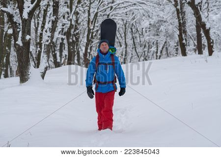 Happy snowboarder with backpack walks through the forest after snowfall, admiring snow covered trees on the slope - anticipation of adventure. Travel in wilderness.
