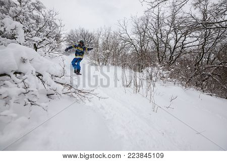 Snowboarder is riding fast among snow-capped trees and bushes, after snowfall, with arms outstretched, on the background of stormy sky. Epic backcountry in winter wilderness.